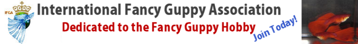 International Fancy Guppy Association