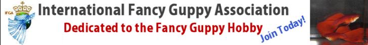 International Fancy Guppy Association