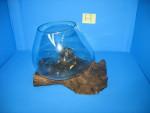 Thumbnail for aquariums0051582437002