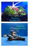 Thumbnail for aquariums0051583199542