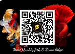 Thumbnail for books1561244410