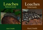 books&1597157191 Thumbnail