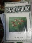 books&1635022743 Thumbnail