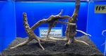 Thumbnail for driftwood1611427202