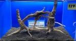 driftwood&1615061403 Thumbnail