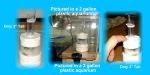 Thumbnail for filteration1534429801