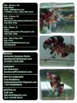 Thumbnail for fwbettashmp1540520730
