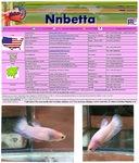 Thumbnail for fwbettashmp1568727004