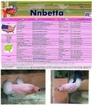 Thumbnail for fwbettashmp1568739611