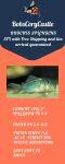 fwcatfishc&1627582801 Thumbnail