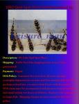 fwcatfishp&1632018079 Thumbnail